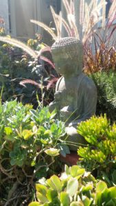 Buddha watches over our yard