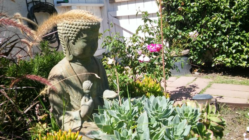 Buddha welcomes you to our beautiful yard at Susan's House